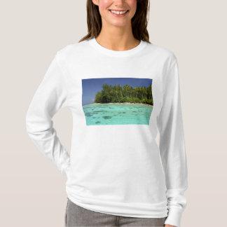 T-shirt South Pacific, Polynésie française, Moorea 2