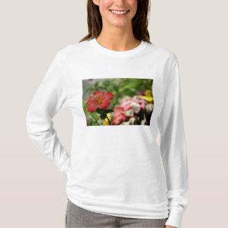 T-shirt South Pacific, Polynésie française, société 2