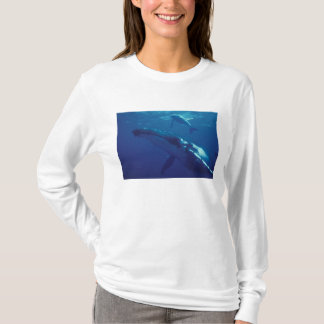 T-shirt South Pacific, Tonga. baleine et veau de bosse