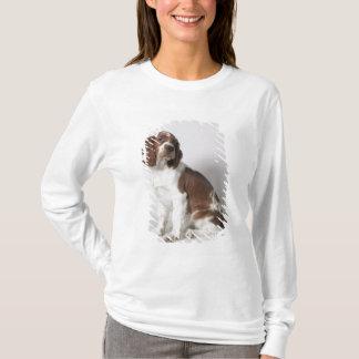 T-shirt Springer spaniel
