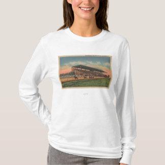 T-shirt Springfield, IL - cheval juste de raisons d'état