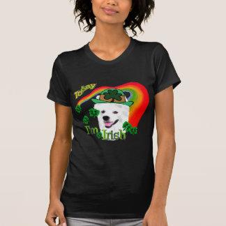 T-shirt St patrick américain de chien esquimau