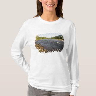 T-shirt St Rivière de marguerite des prés dans Parc du