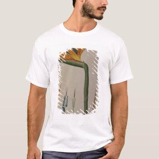 T-shirt Strelitzia Reginae, de 'Les Strelitziacees