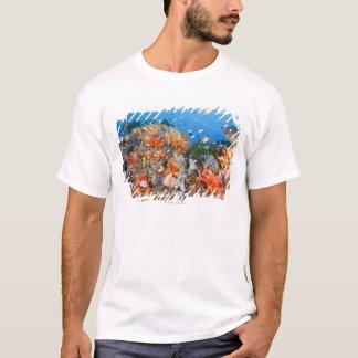 T-shirt Structure saine de récif, parc national de Komodo