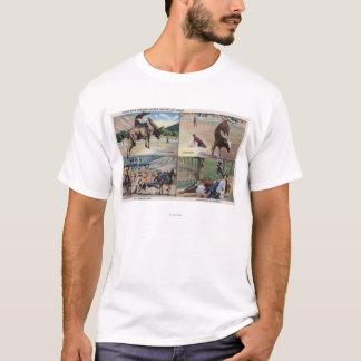 T-shirt Sun Valley, scènes de poursuite d'IDRodeo Taureau