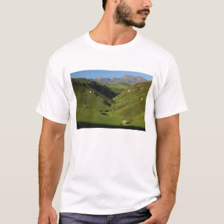 T-shirt Taille longue, le château du géant, montagnes de