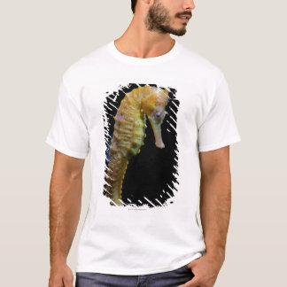 T-shirt taillong shapeprehensile de swimmerequine droit