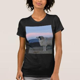T-shirt Tee - shirt de dames adapté par noir de moutons