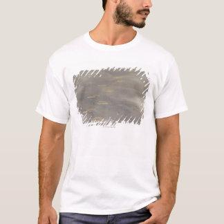 T-shirt tempête soufflant le sable changeant au-dessus des