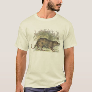 T-shirt Thylacine/T-shirt tasmanien de tigre