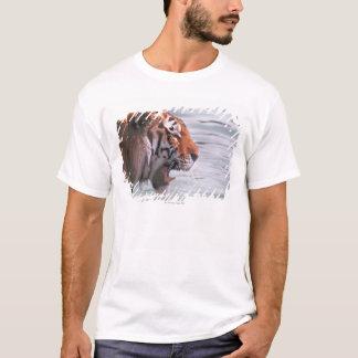 T-shirt Tigre de baîllement dans l'eau