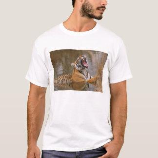 T-shirt Tigre de Bengale royal baîllant dans l'étang de