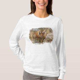 T-shirt Tigre de Bengale royal buvant dans la forêt