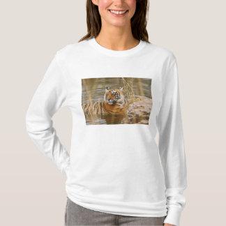 T-shirt Tigre de Bengale royal dans l'étang de forêt,