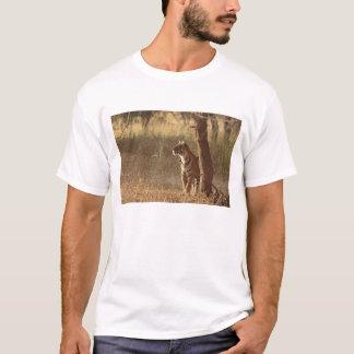 T-shirt Tigre de Bengale royal sur le regard pour la