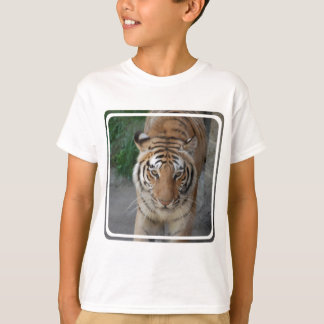 T-shirt Tigre doux