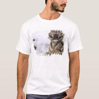 T-shirt Tigre sibérien (altaica du Tigre de Panthera)