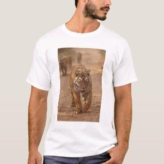 T-shirt Tigres de Bengale royaux sur la voie, Ranthambhor