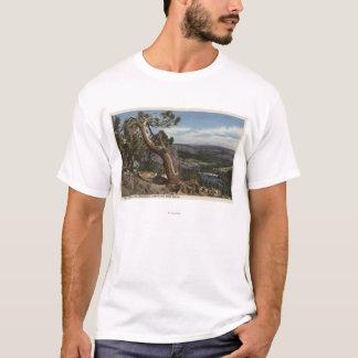 T-shirt Timberline sur la crête gigantesque