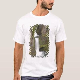 T-shirt Toketee tombe dans le comté de Douglas, Orégon