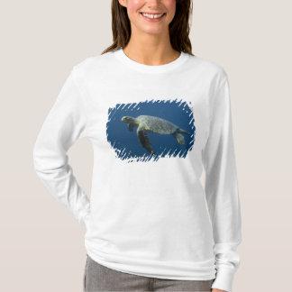 T-shirt Tortue verte (agassisi de mydas de Chelonia) outre
