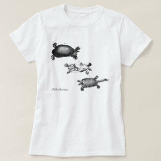 T-shirt Tortues de John Laurens