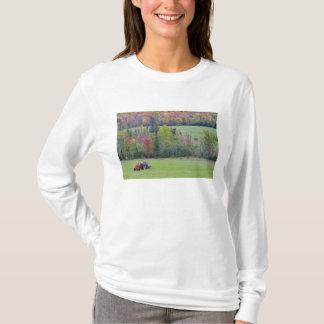 T-shirt Tracteur avec la balle de foin dans le domaine