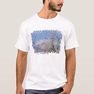 T-shirt Treeful des aigles chauves s'approchent de