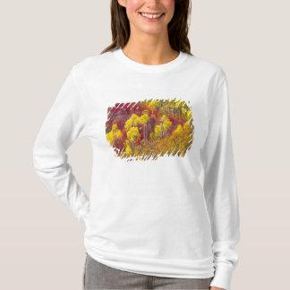 T-shirt Trembles colorés en canyon Utah de Logan dans les