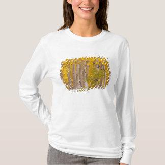 T-shirt Trembles d'automne dans le passage de Kebler dans