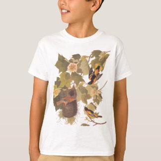 T-shirt Trio de Baltimore Oriole d'Audubon