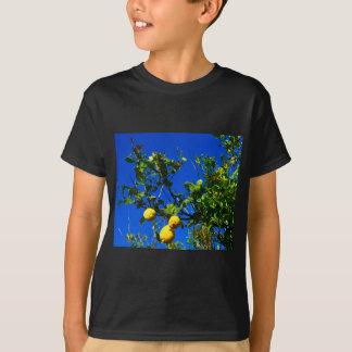 T-shirt Trois citrons siciliens