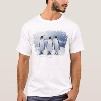 T-shirt Trois le Roi pingouins