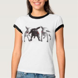 T-shirt Trois moutons effrontés