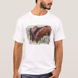 T-shirt Troupeau sauvage de caballus d'Equus de cheval)