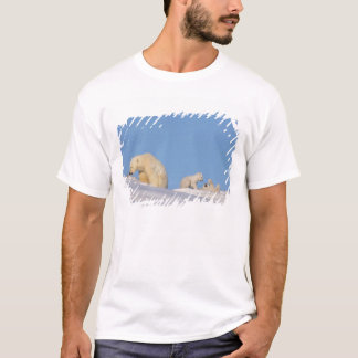 T-shirt Truie d'ours blanc alimentant sur l'herbe pour