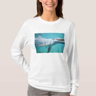 T-shirt Truncatus de Tursiops de dauphin de Bottlenose), 2