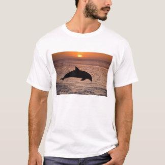 T-shirt Truncatus de Tursiops de dauphins de Bottlenose)