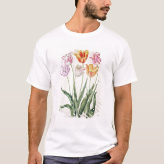 """T-shirt Tulipes, du """"Florilegium de Nassau"""" (la semaine"""