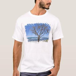 T-shirt Un arbre décoré de vieilles balises sur la plage