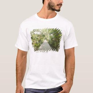 T-shirt Un chemin en bois à travers la forêt tropicale