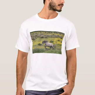 T-shirt Un cheval fonctionnant dans un domaine des fleurs