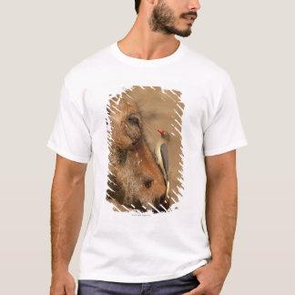 T-shirt Un Oxpecker sur un museau de warthogs,