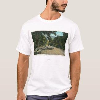T-shirt Un principal mouton de berger sur une route du