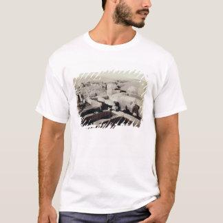 T-shirt Un temple excavé au pied du sphinx, 4ème