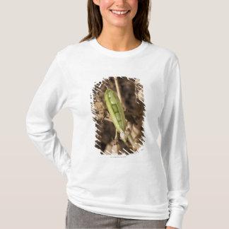 T-shirt Une cosse de pois sur une usine sèche de cosse de