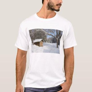 T-shirt Une scène neigeuse au peu d'étang de Lyford d'AMC