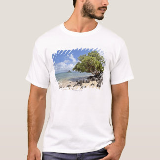 T-shirt Une vue regardant le long du rivage vers