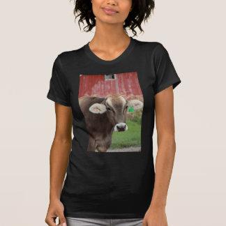 T-shirt Vache à Suisse de Brown